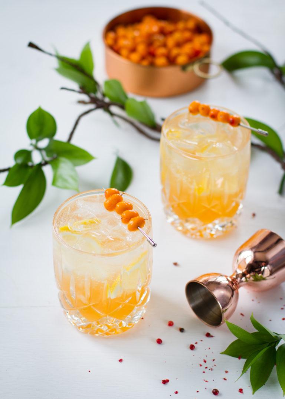Gin Tonic à l'argousier - Stadaconé bleu